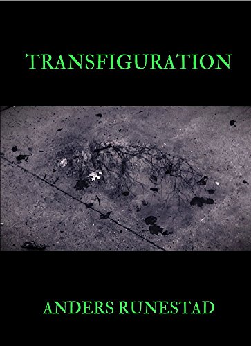 Transfiguration - Amazon